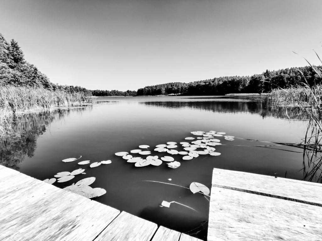 czarno białe zdjęcie jeziora